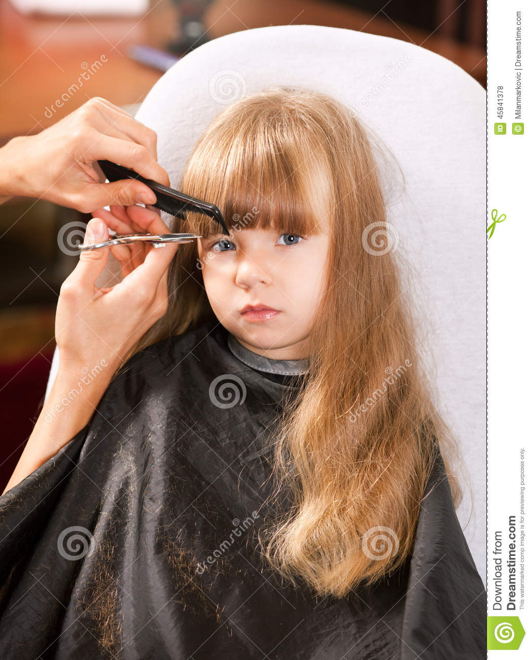 Hair Cutting Stock Photo Image Of Fashion Care Hand 45841378