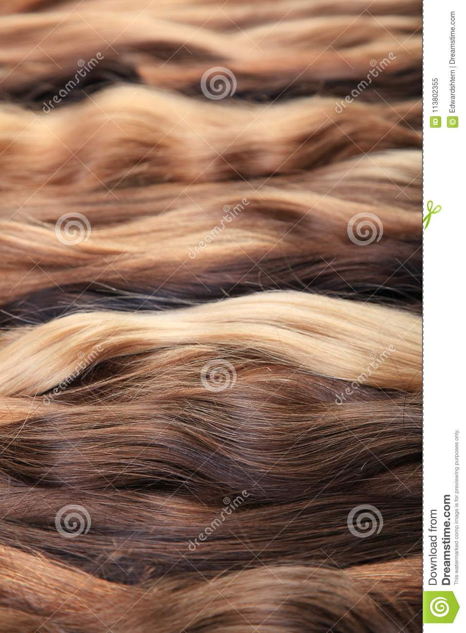 Hair Extension Equipment Of Natural Hair. Hair Samples Of Differ ...