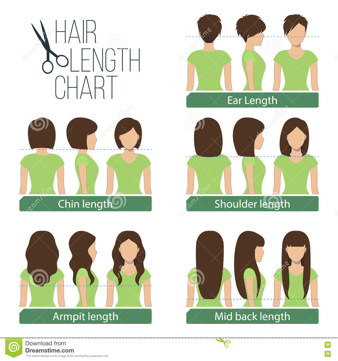 Amazing Hair Length Chart Stock Vector Illustration Of Back 71534057 Schematic Wiring Diagrams Phreekkolirunnerswayorg