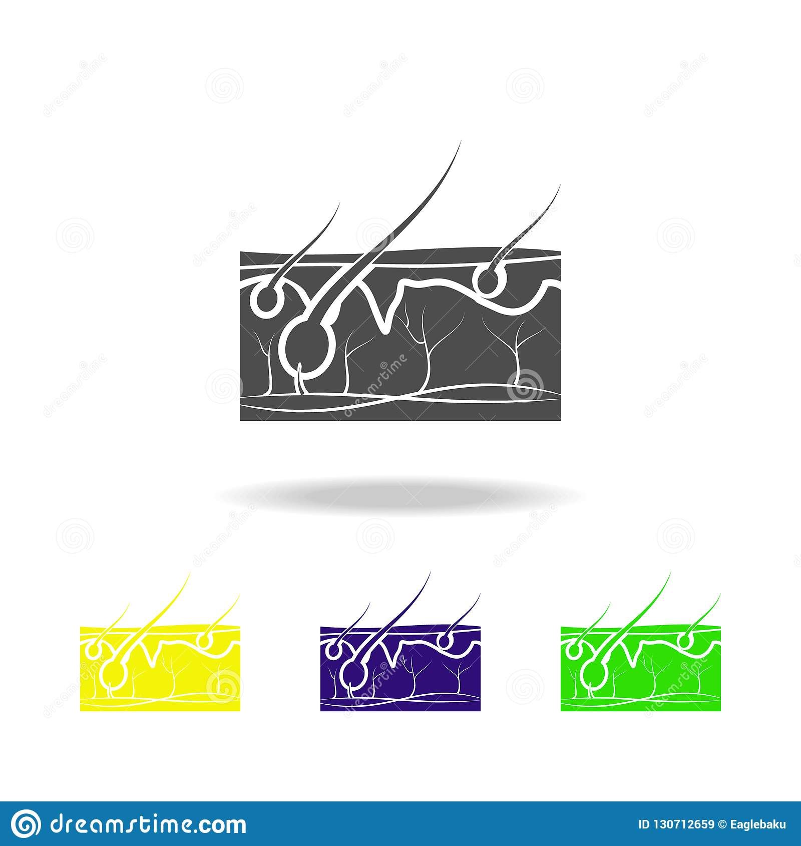 the structure of human hair vector illustration. Black Bedroom Furniture Sets. Home Design Ideas