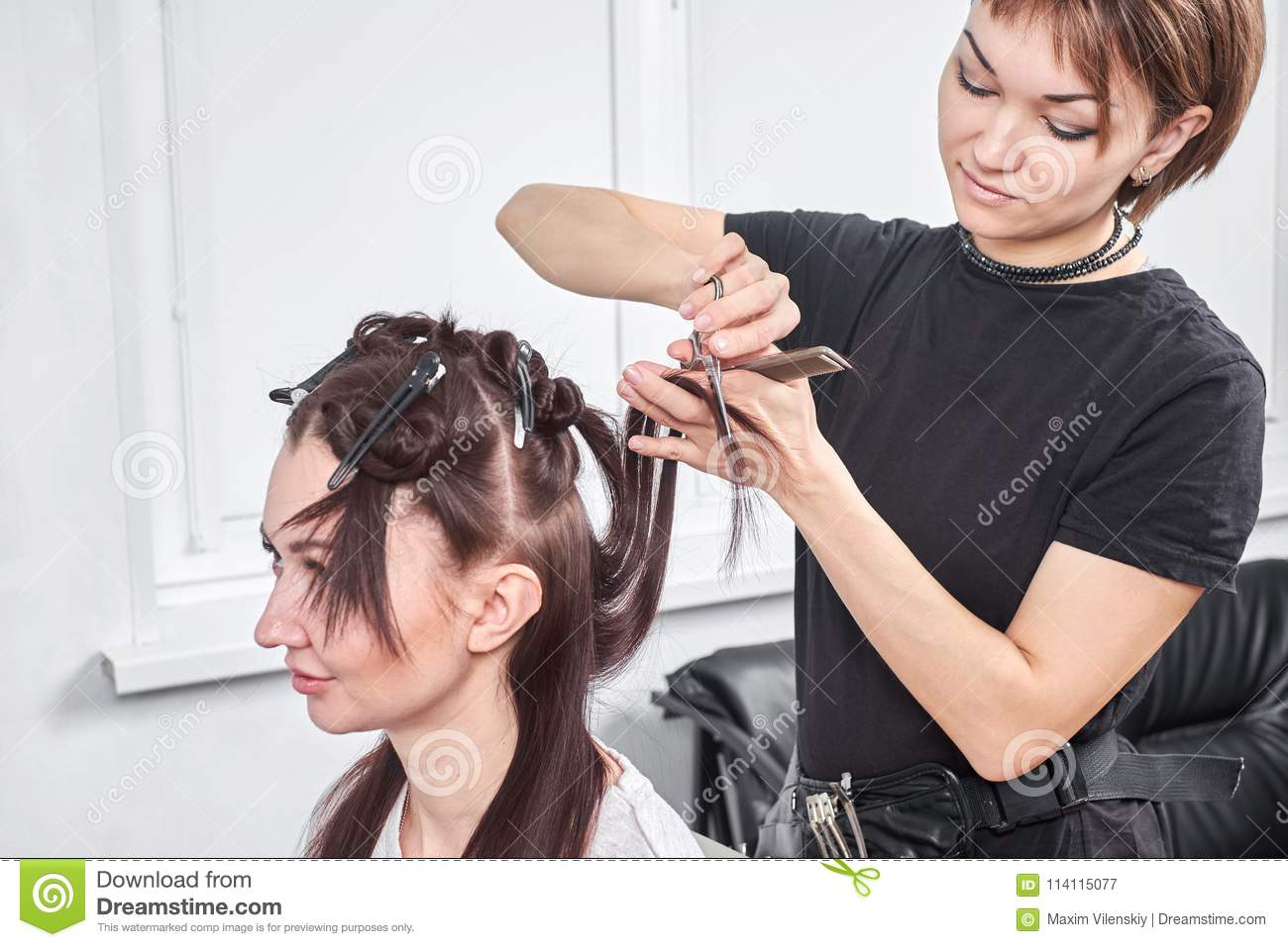 Hair Stylist Making New Haircut To Brunette Woman In Salon Stock Image Image Of Coiffeur Female 114115077