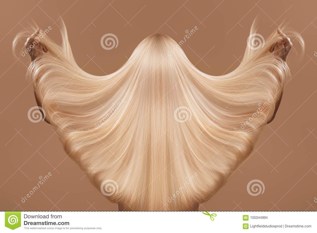 Download Haircare concept stock photo. Image of nude, beautiful - 105044994