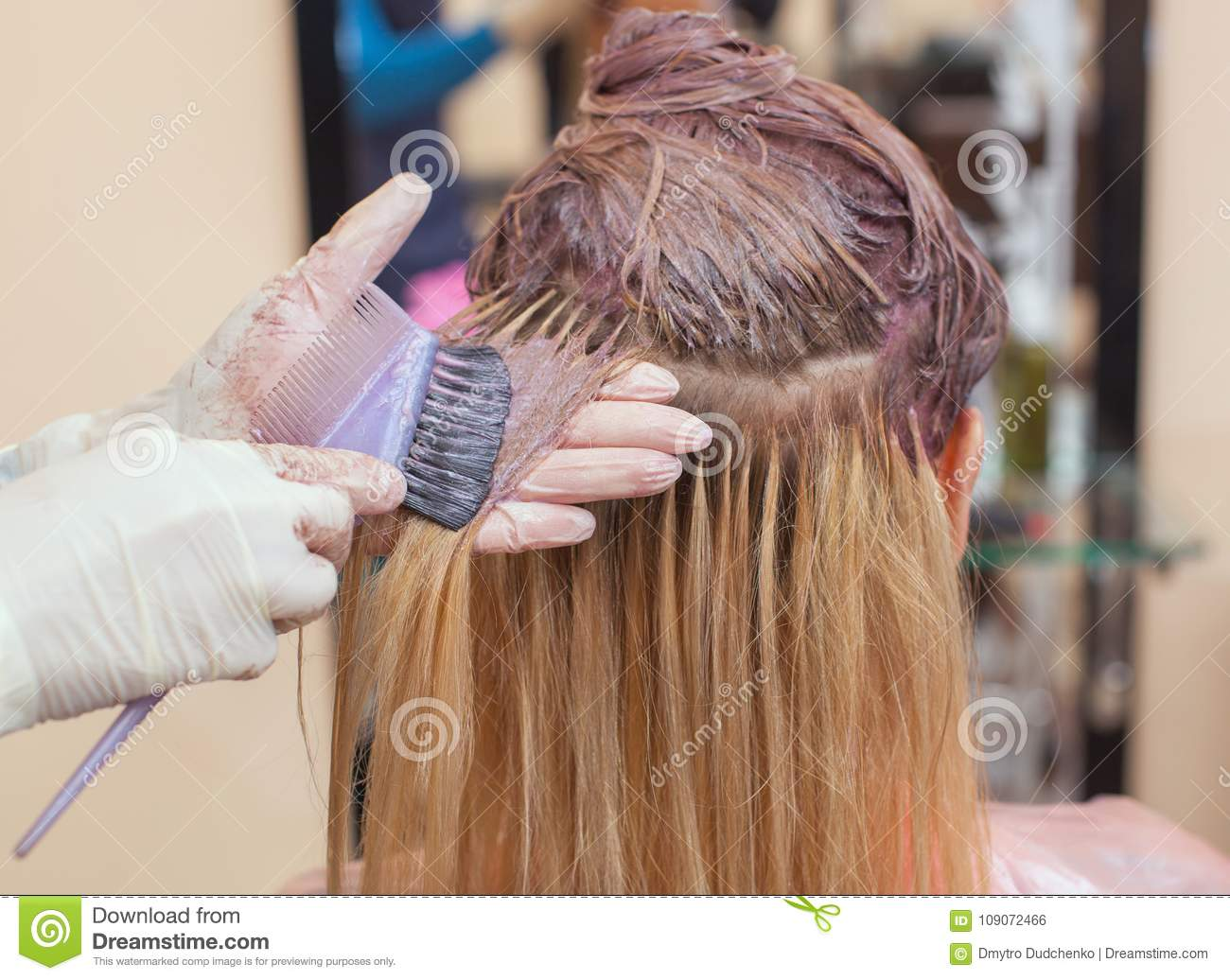 The hairdresser paints the woman`s hair in white, apply the paint to her hair