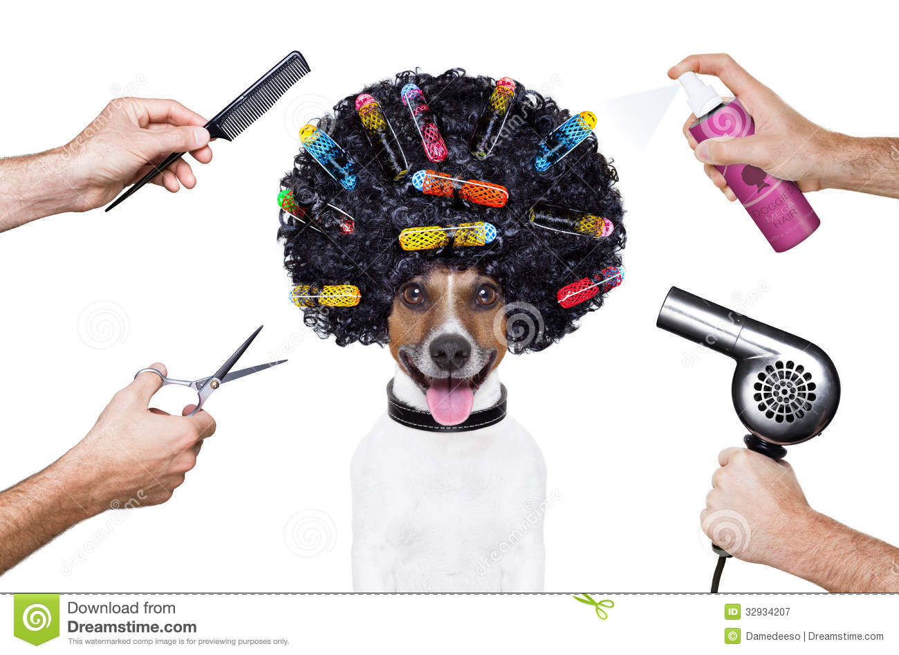 Hairdresser Scissors Comb Dog Spray Royalty Free Stock