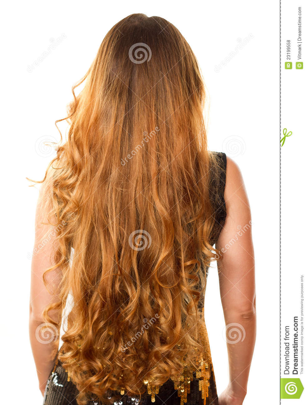 hairstyle from long curly hair from the back royalty free