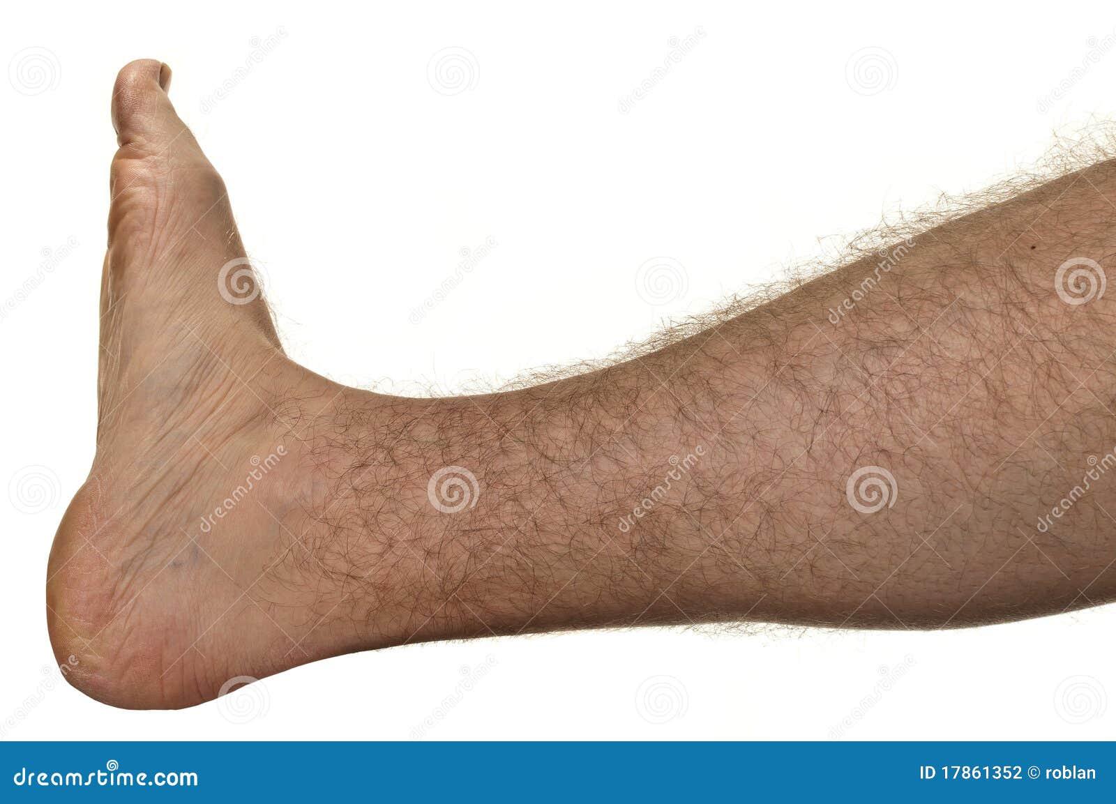 Hairy Legs Photos 54