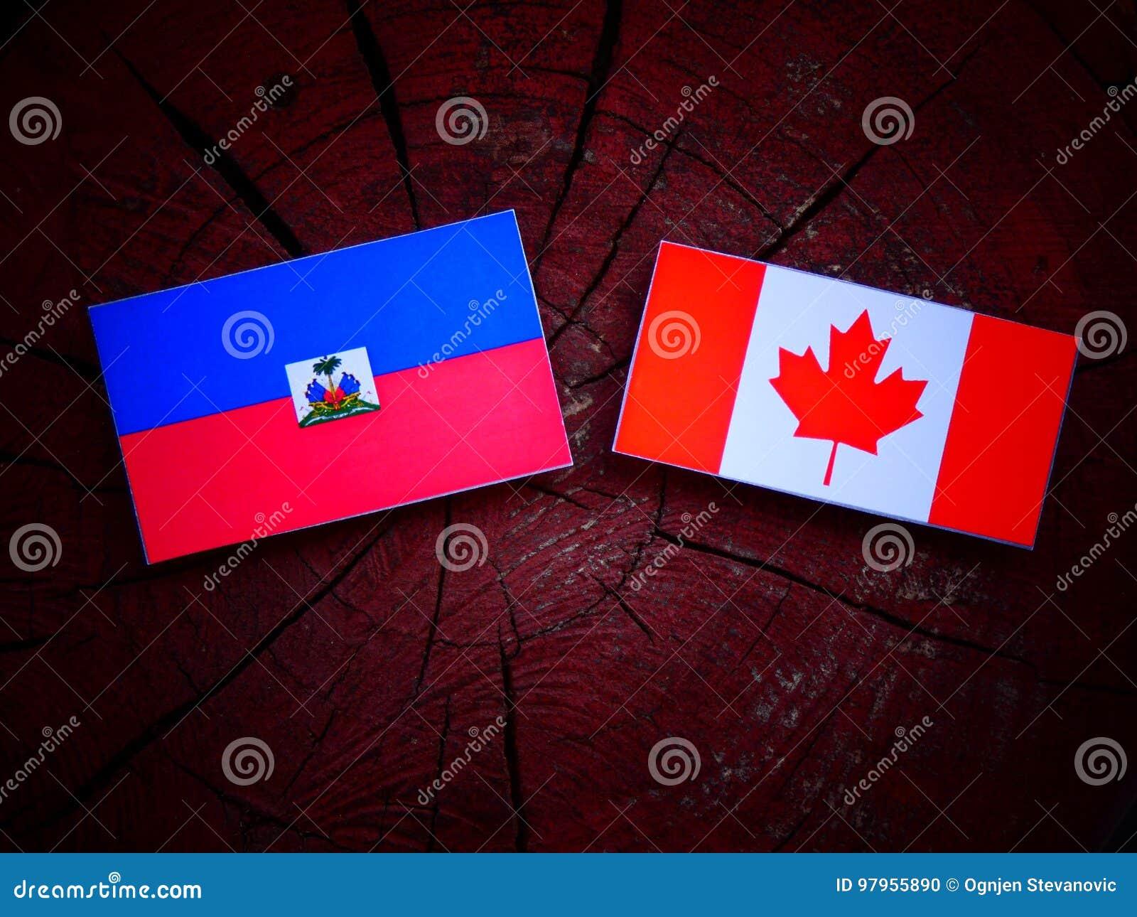 Haitańska flaga z kanadyjczyk flaga na drzewnym fiszorku odizolowywającym