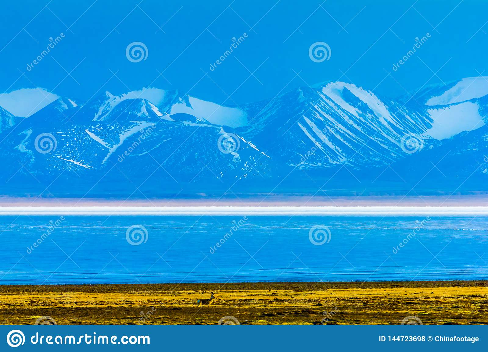 Hala湖和雪加盖了祁连山山脉,青海西藏Platea,中国