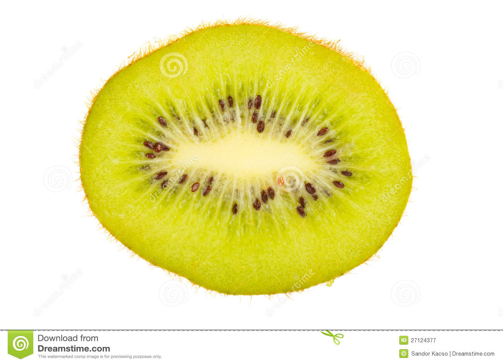 Kiwi fruit cut in half close up - Half Cut Kiwi Royalty Free Stock Photography Image 27124377