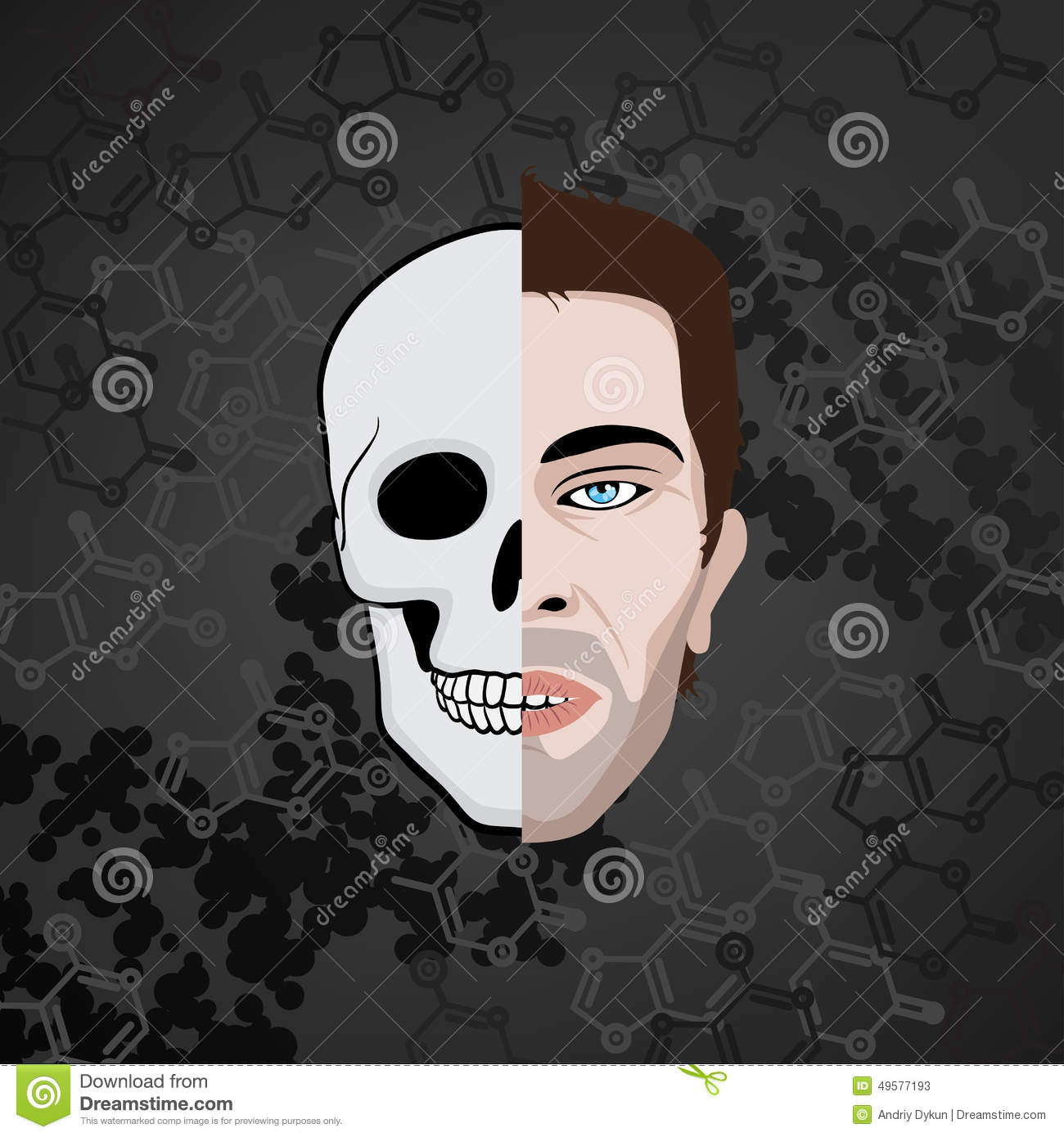 half face skull stock vector  illustration of mouth  nose