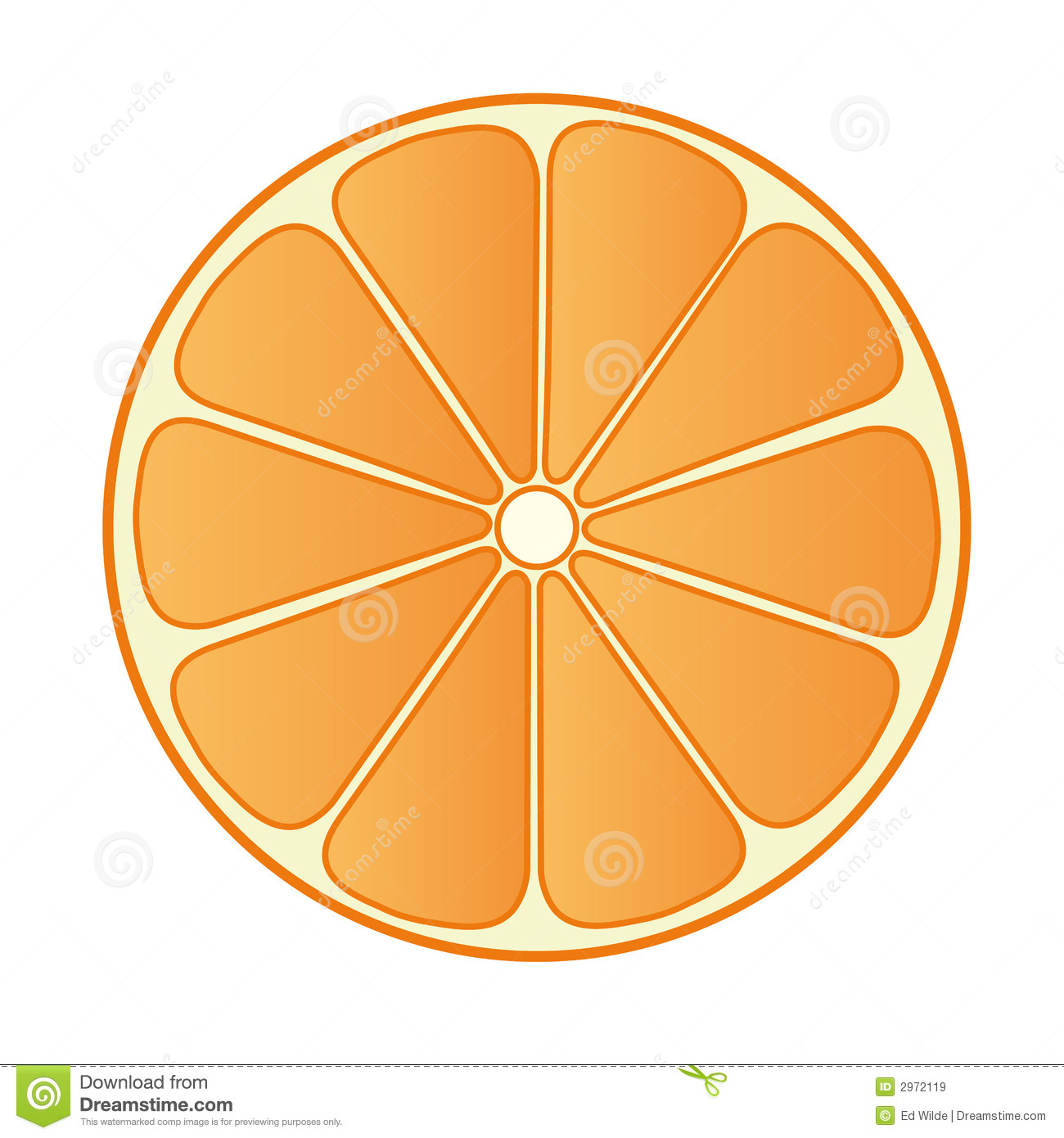 Half Orange 02 stock vector. Image of fruity, fruit ...