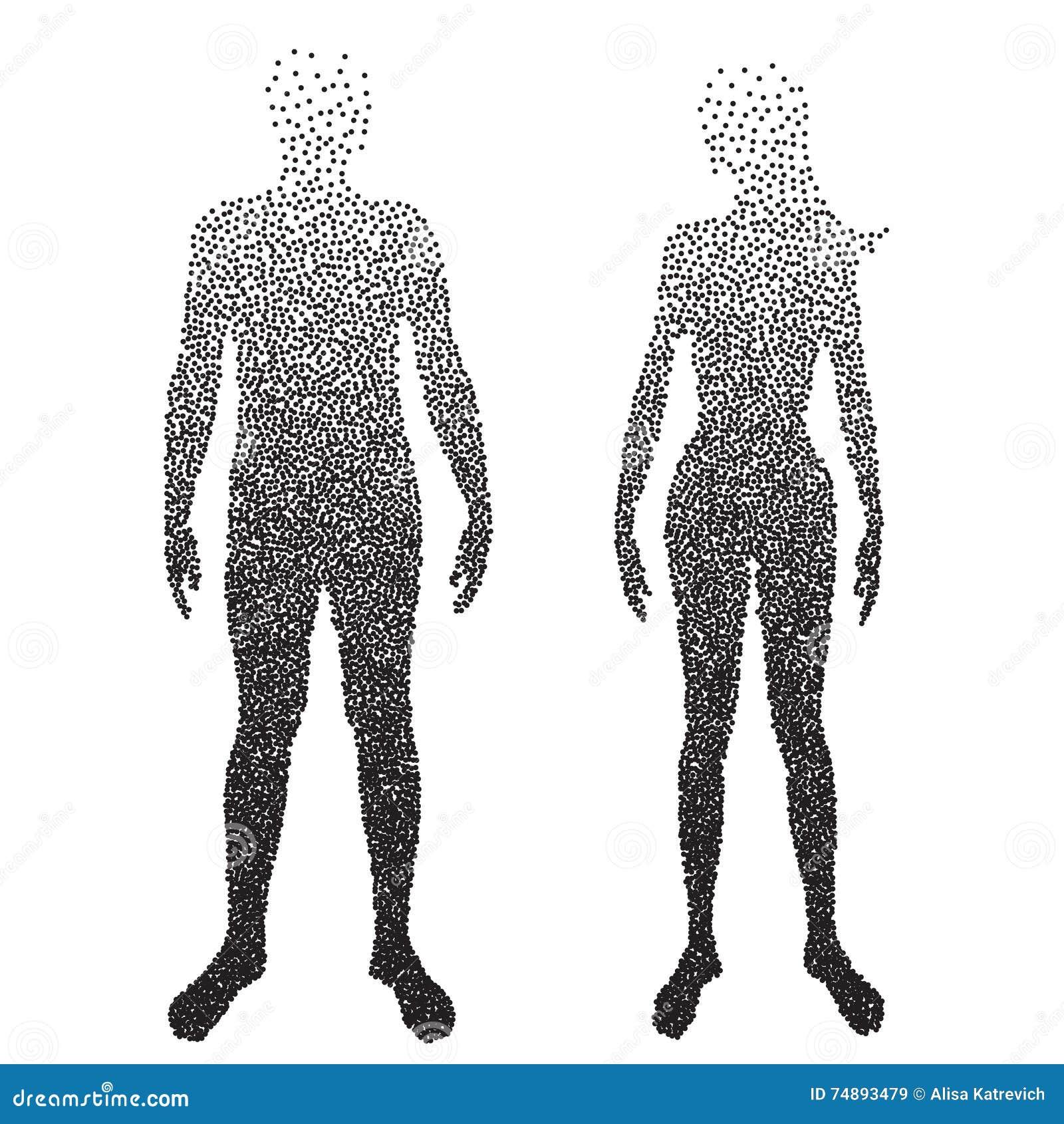 Halftone Body , Male And Female Anatomy, Designed Using Square Dot ...