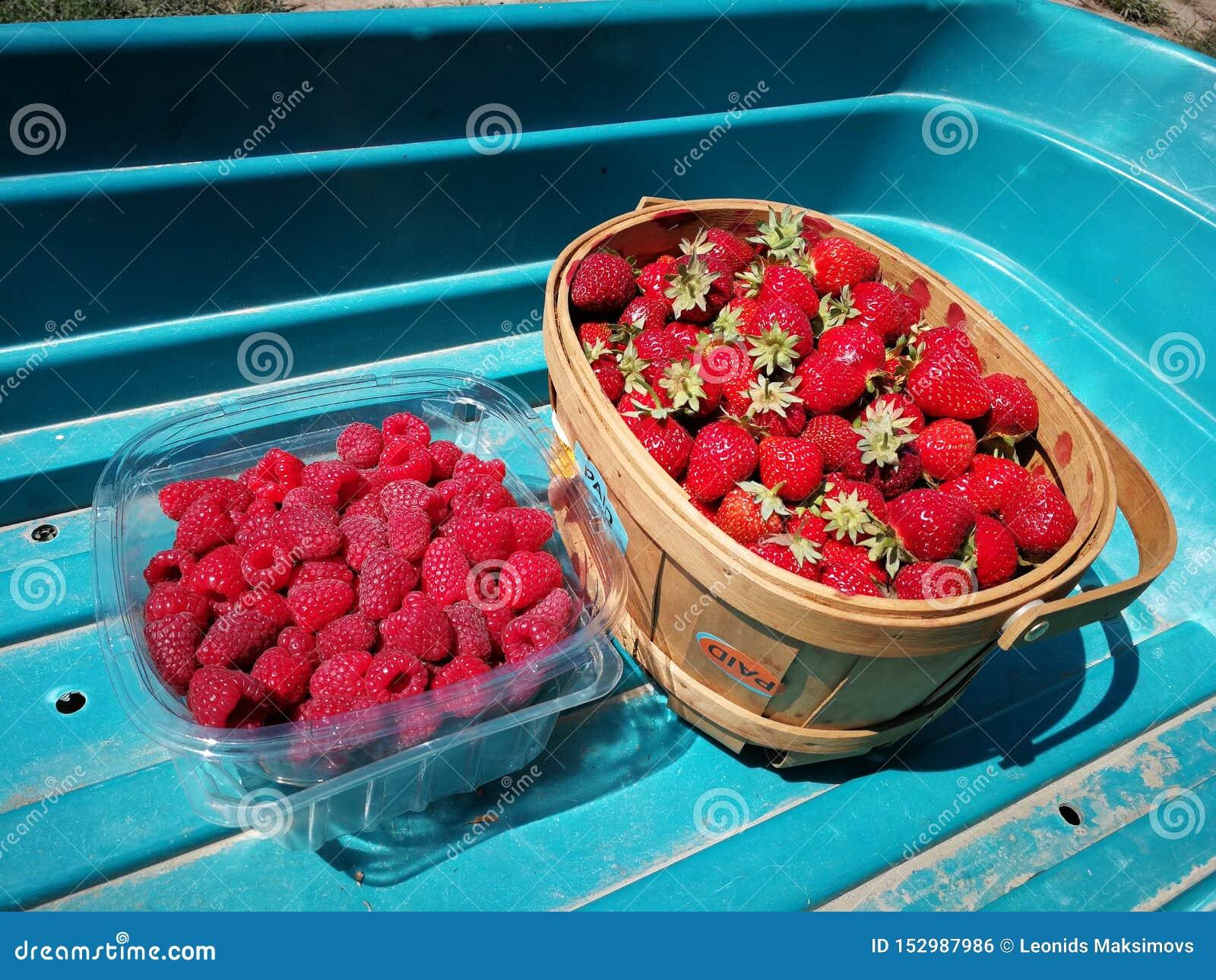 Hallon och jordgubbar