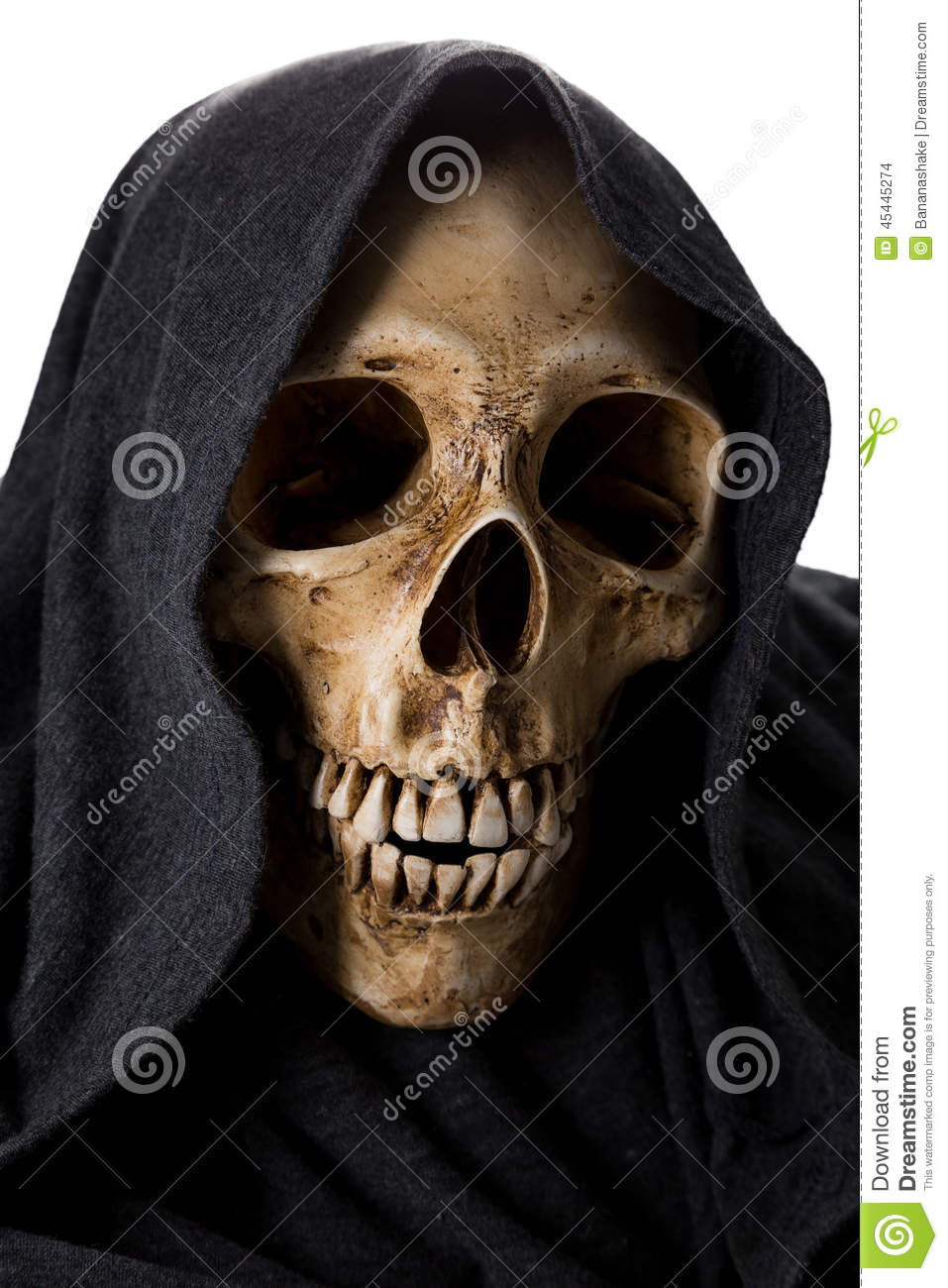 death halloween head skeleton - Halloween Skeleton Head