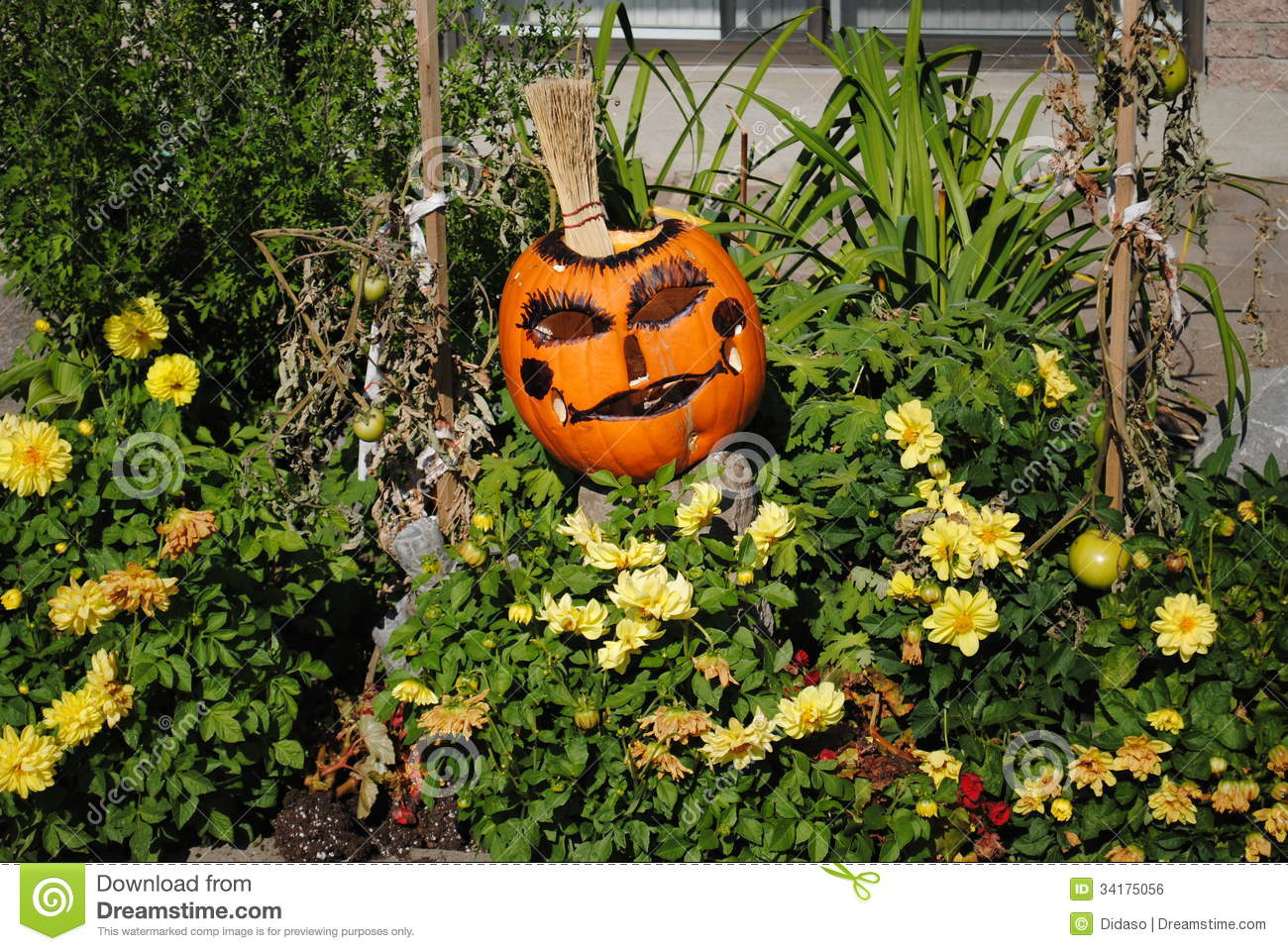 Halloween royalty free stock image image 34175056 for Decor mineral pour jardin