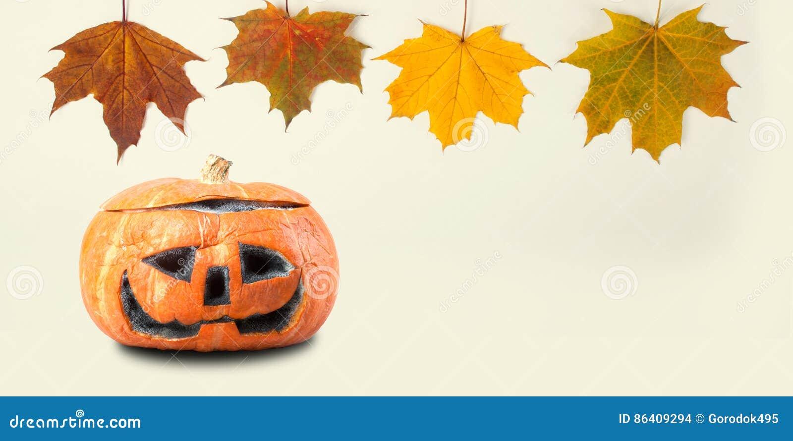 Halloween Decoration Template With Orange Pumpkin Colorful Maple ...