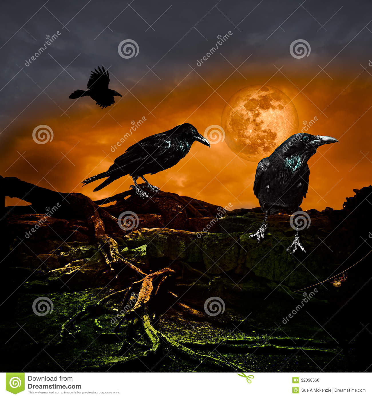 Halloween Design Holiday Party Background Full Moon Raven Crow ...