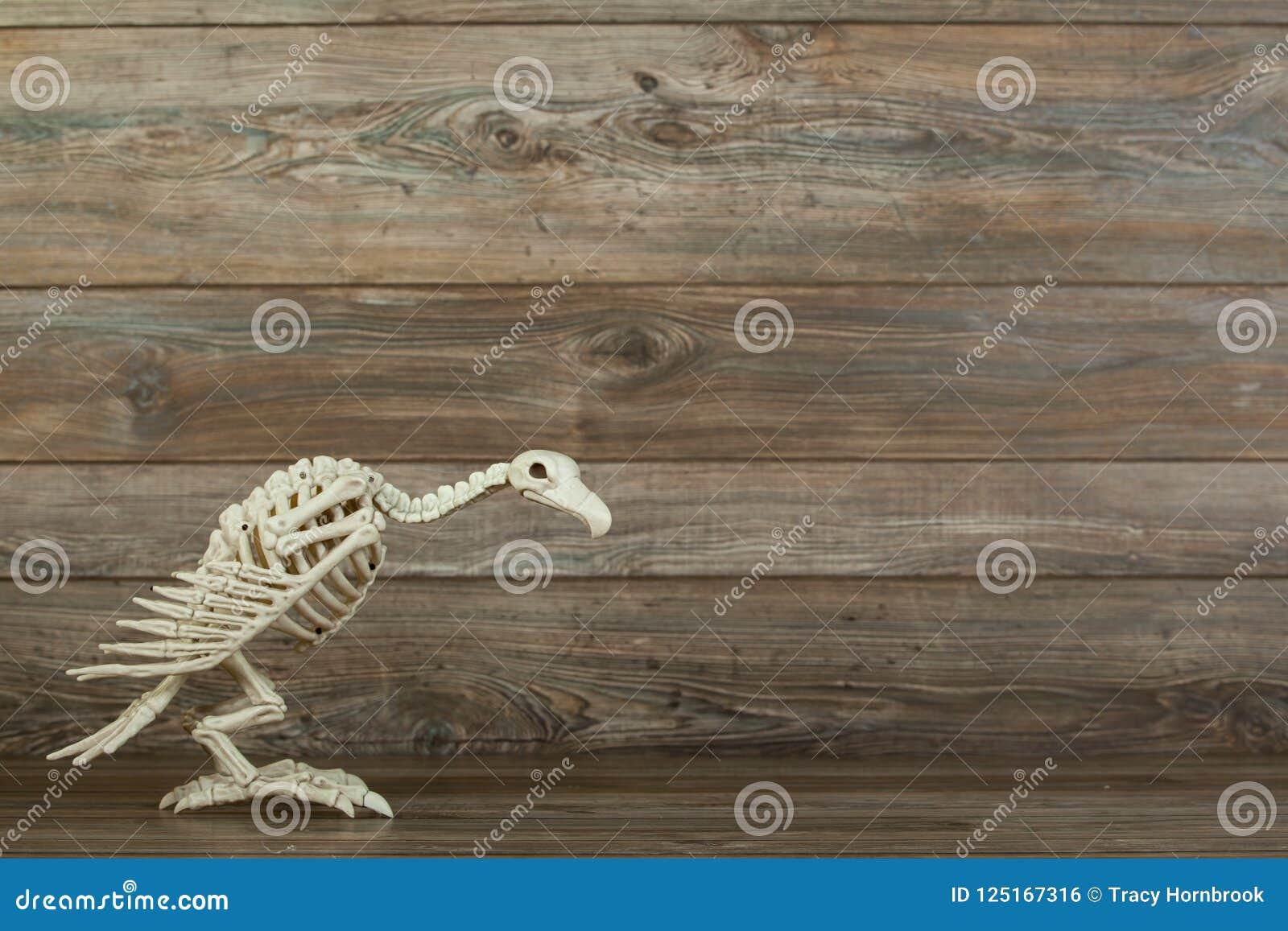 Halloween-gierskelet op houten achtergrond