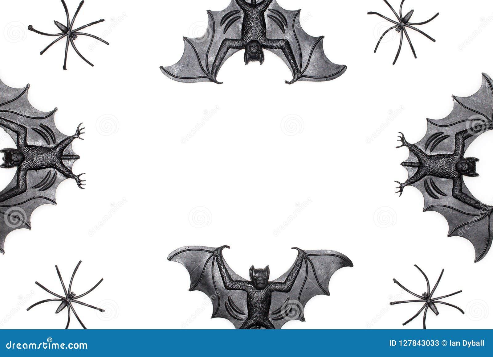 Halloween graniczy wizerunek z odkrywczość strasznym nietoperzem i pająk bawi się o