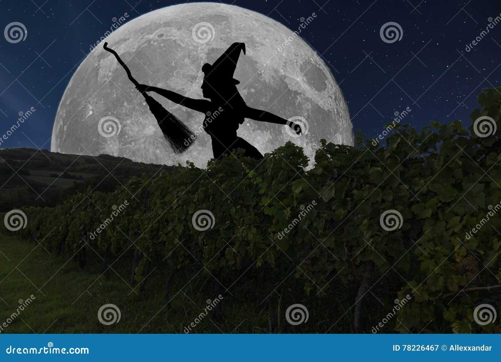 Halloween hexenschattenbildfliegen mit besenstiel vollmond vin