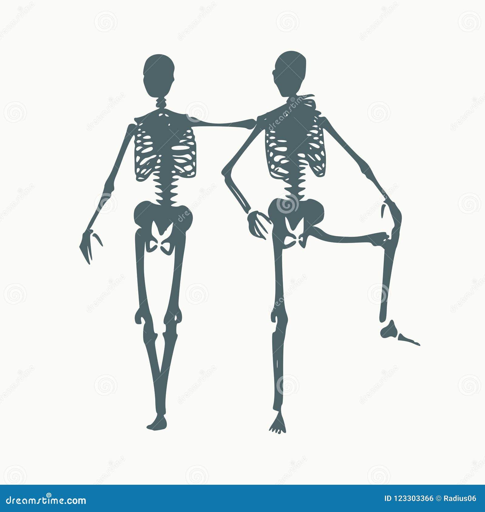 Halloween Human Skeleton Stock Vector Illustration Of Lifestyle