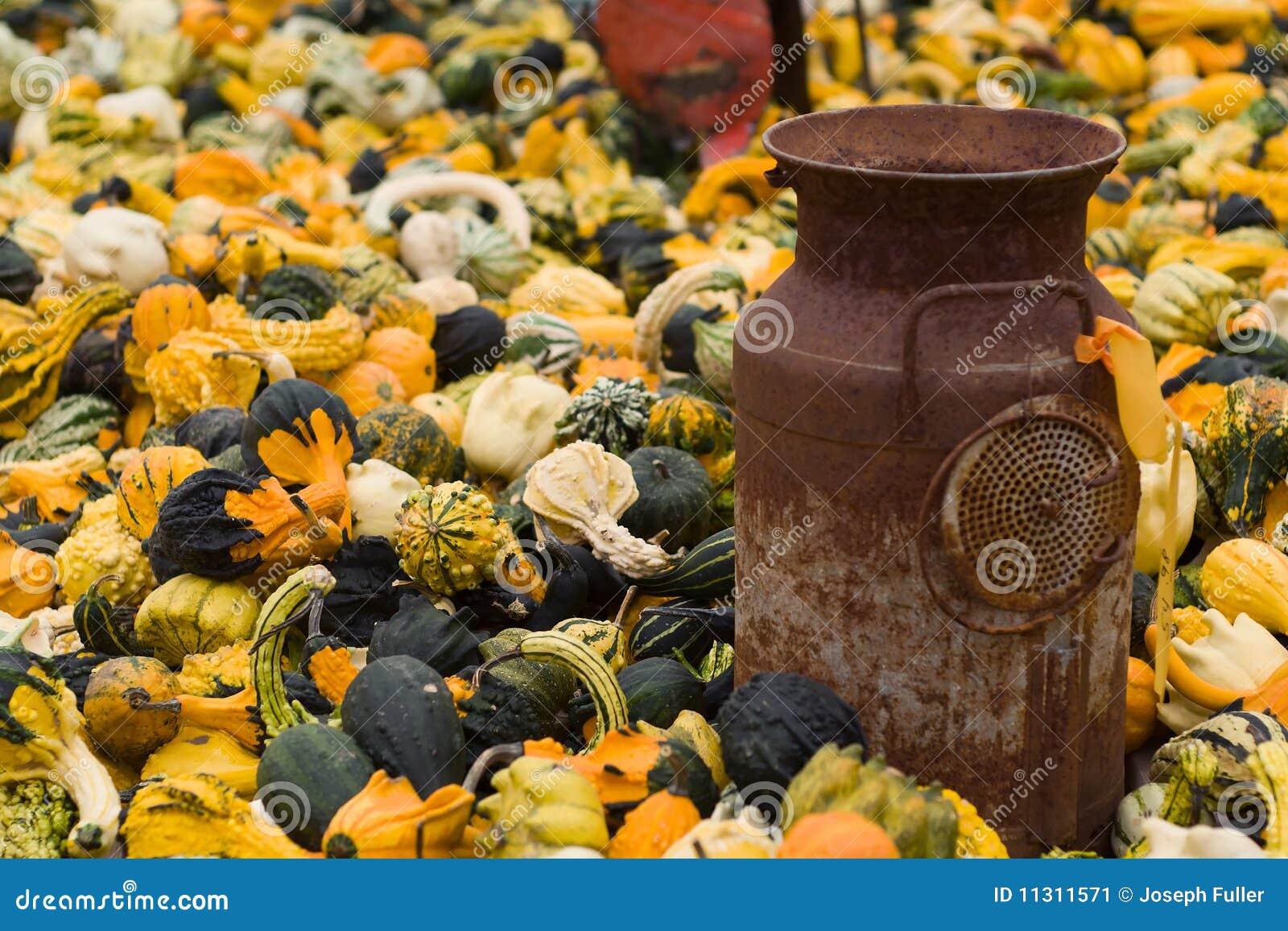 Halloween-Kürbisse und antike Milchdose