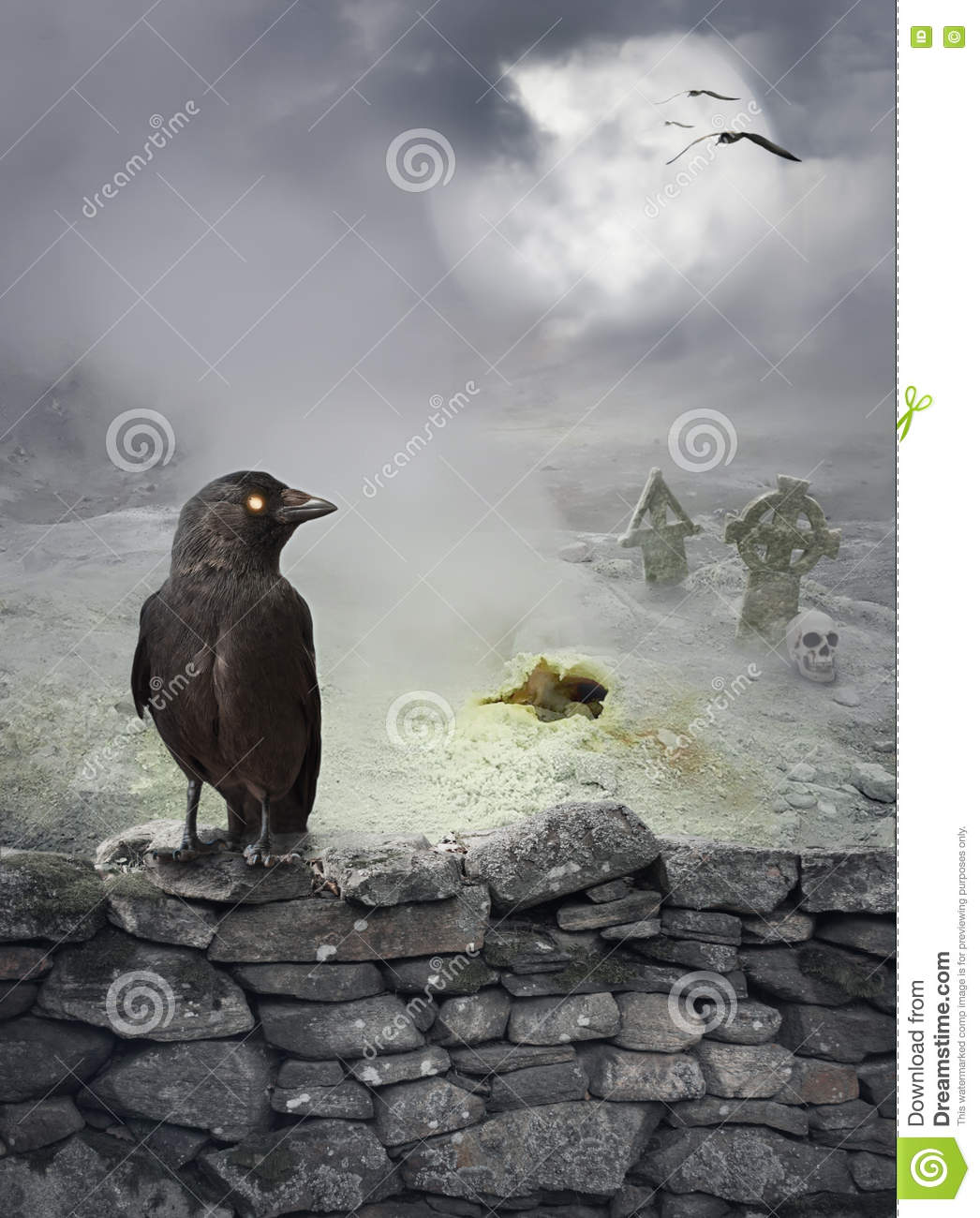 Halloween mystical background with raven on stone wall