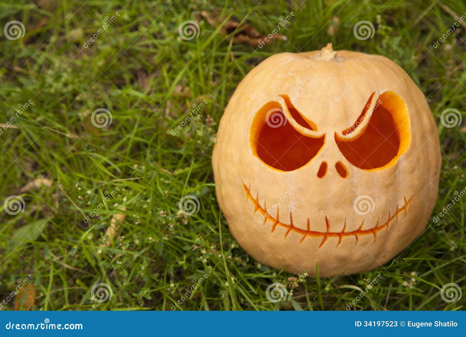 Halloween Pumpkin On Green Grass Stock Image