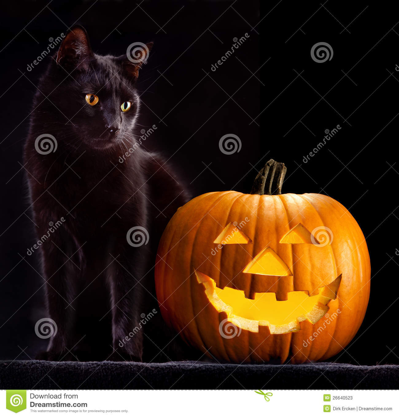 Marvelous Halloween Pumpkin Head And Black Cat