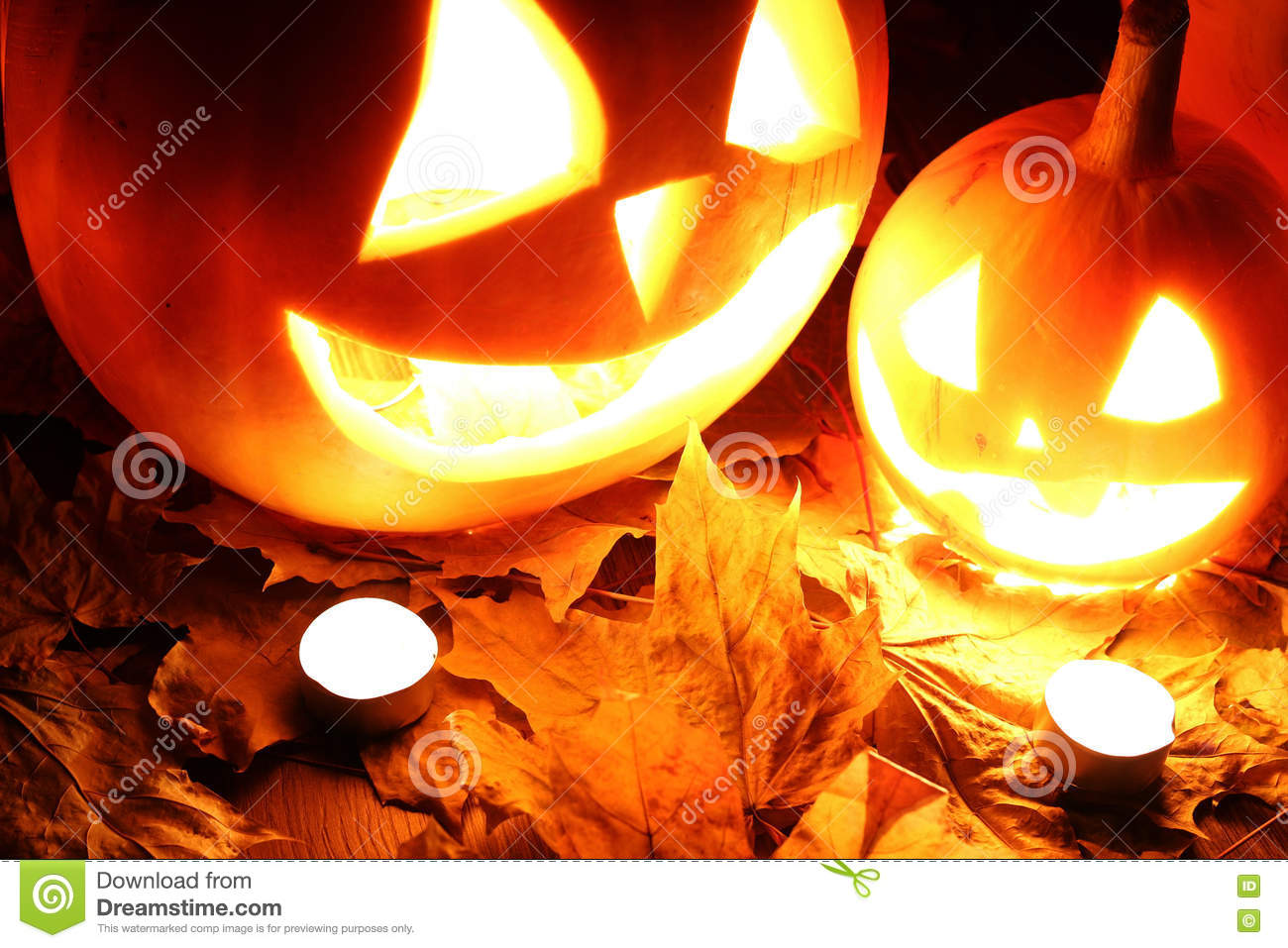 halloween pumpkin leaves fall stock image - image of november, happy