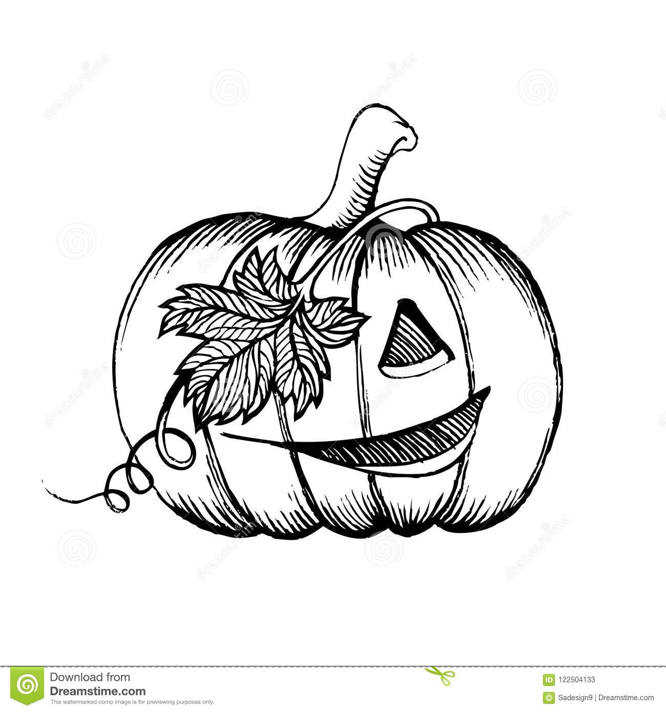 Halloween Pumpkin Drawing Picture.Halloween Pumpkin Sketch Drawing With Leaves Pirate Character