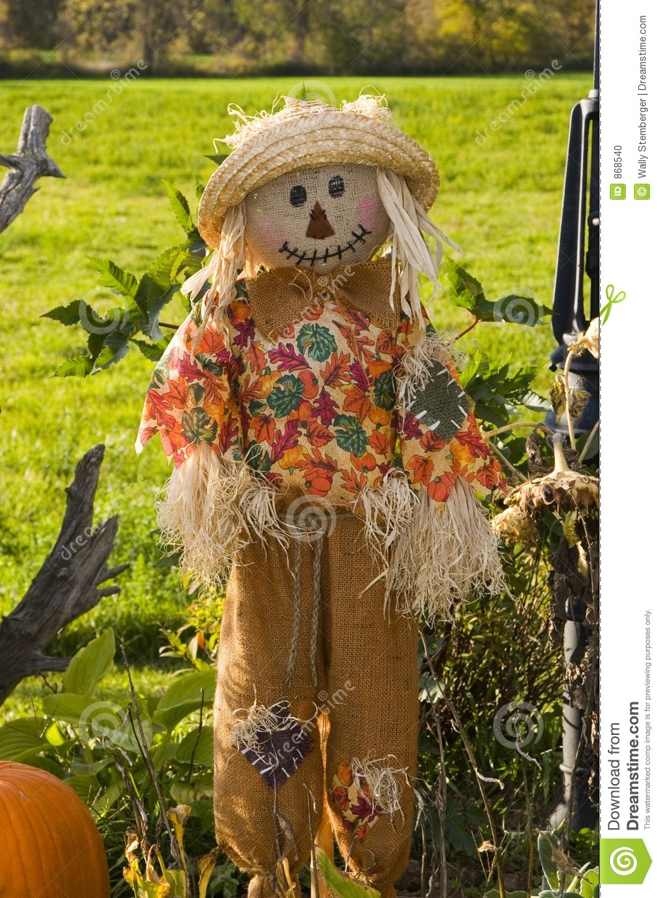 Halloween Scarecrow Stock Photo - Image: 868540