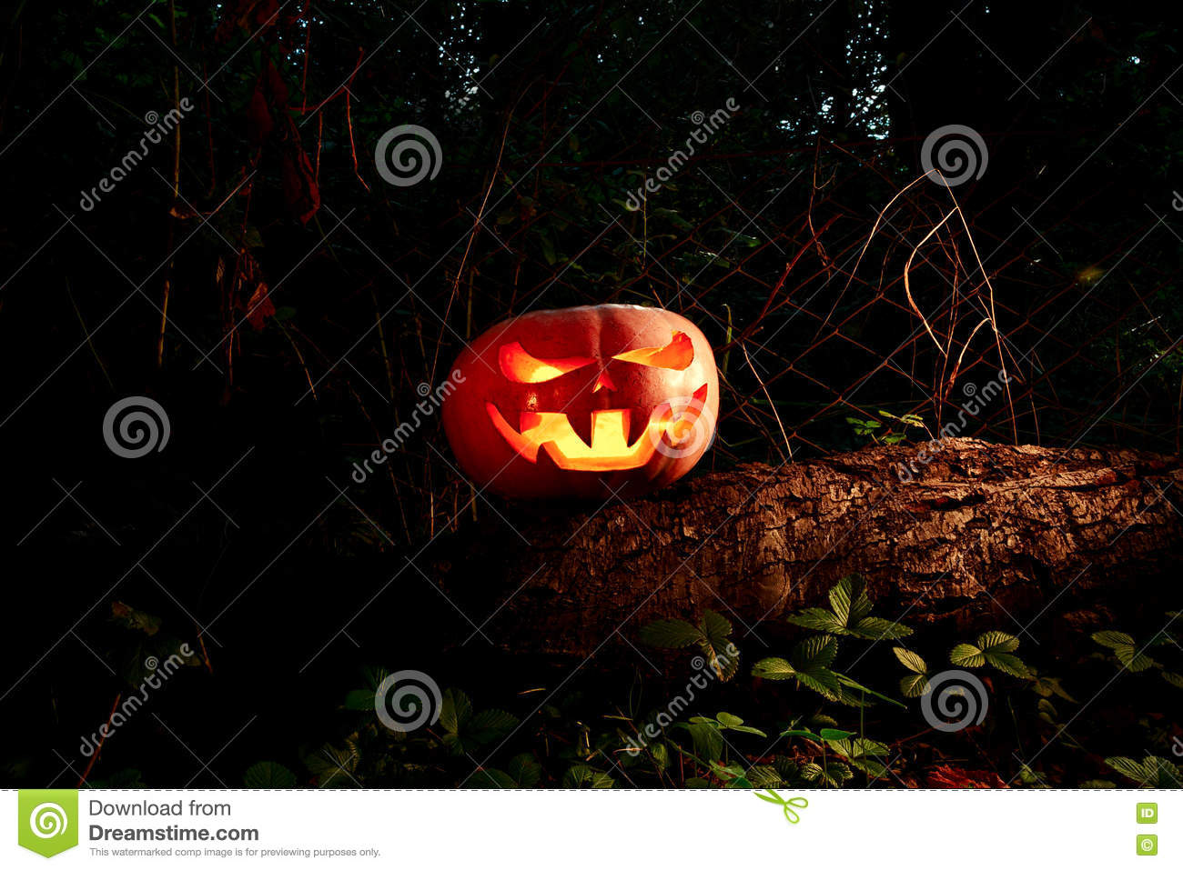 Halloween Scary and creepy pumpkin on a log in the darkness with
