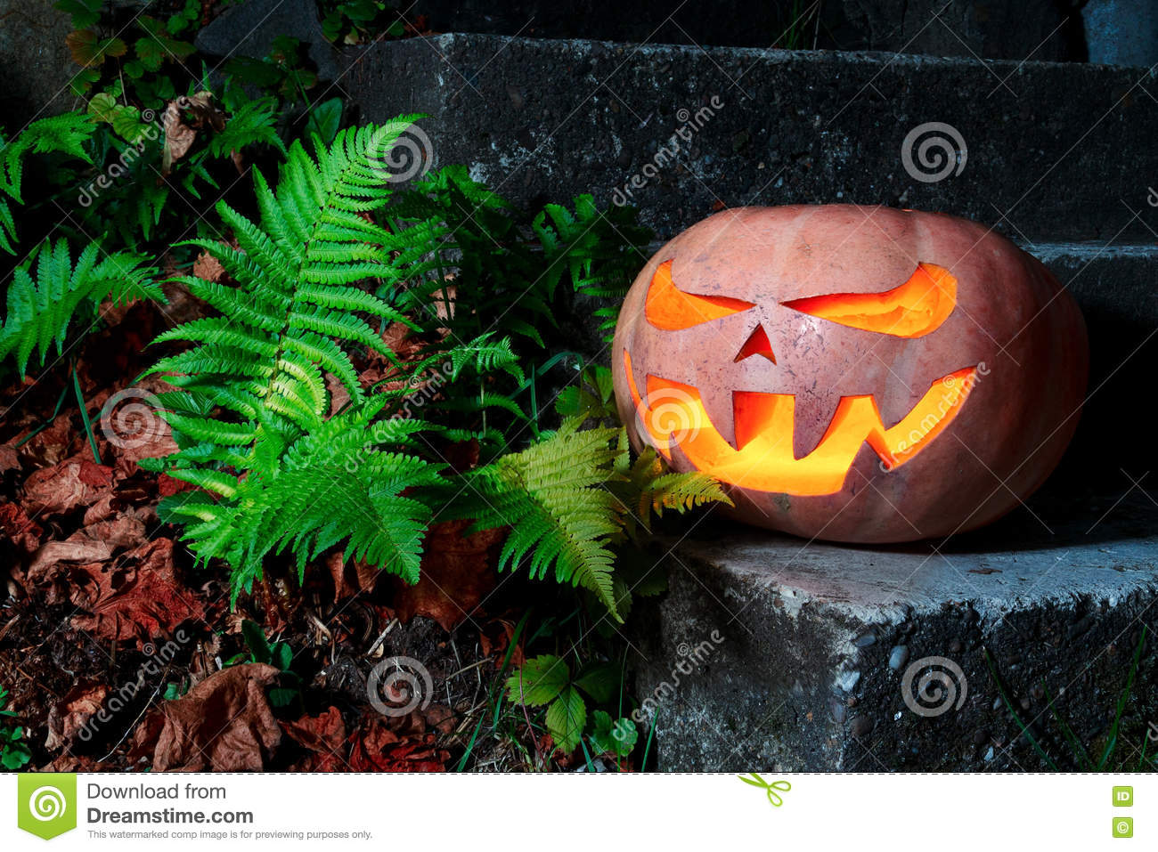 Halloween Scary Pumpkin in the grass with dry leaves and ferns