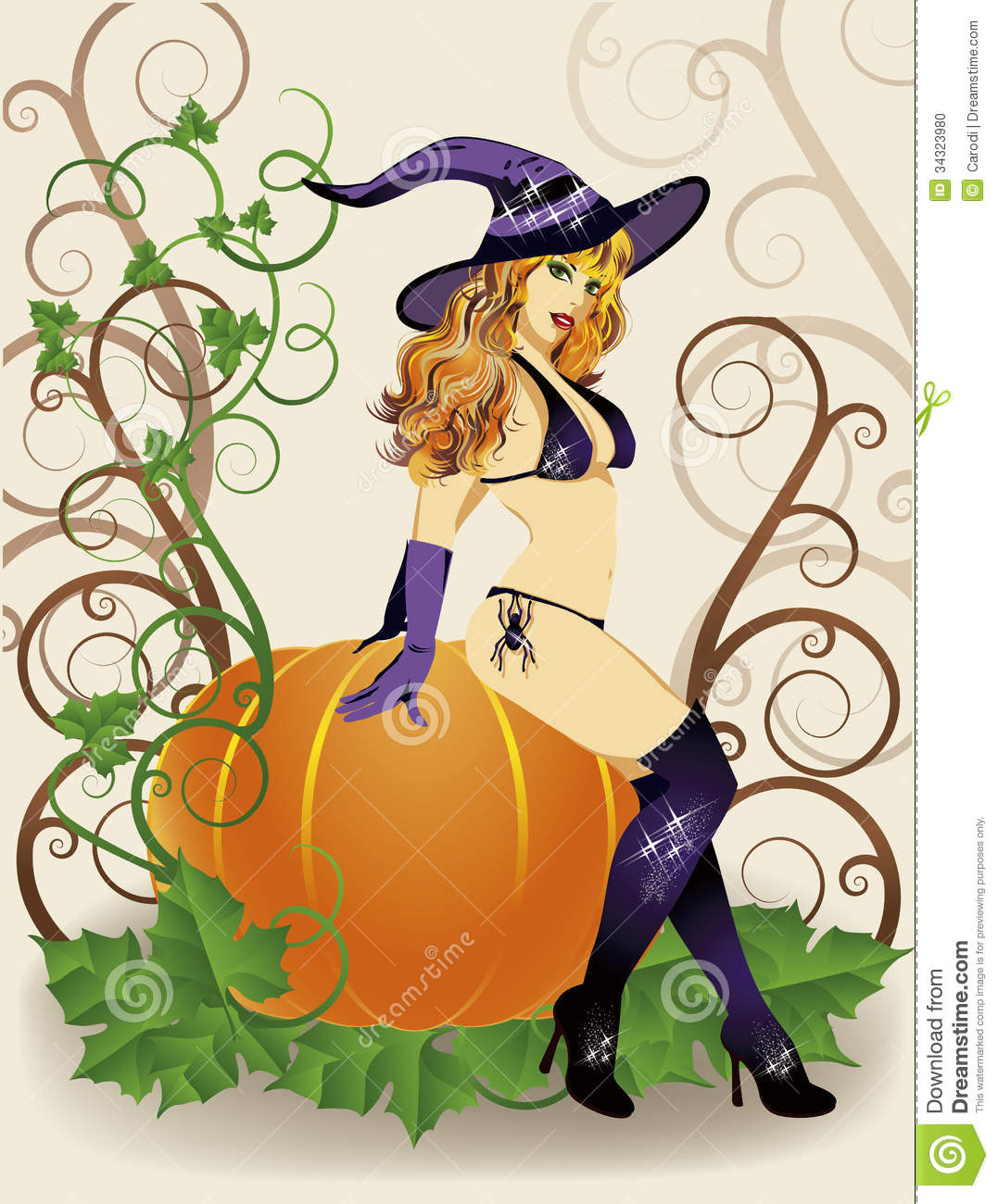 Halloween Witch With Spider And Pumpkin Stock Photo - Image 34323980-6244