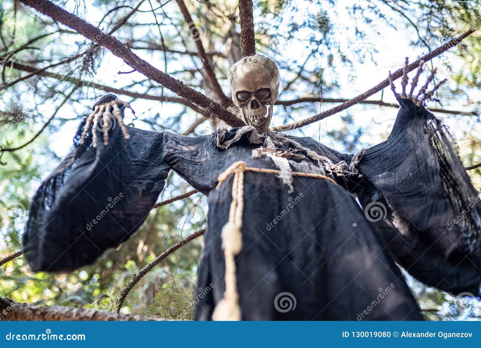 Halloween-Skelet het Hangen op een Boom