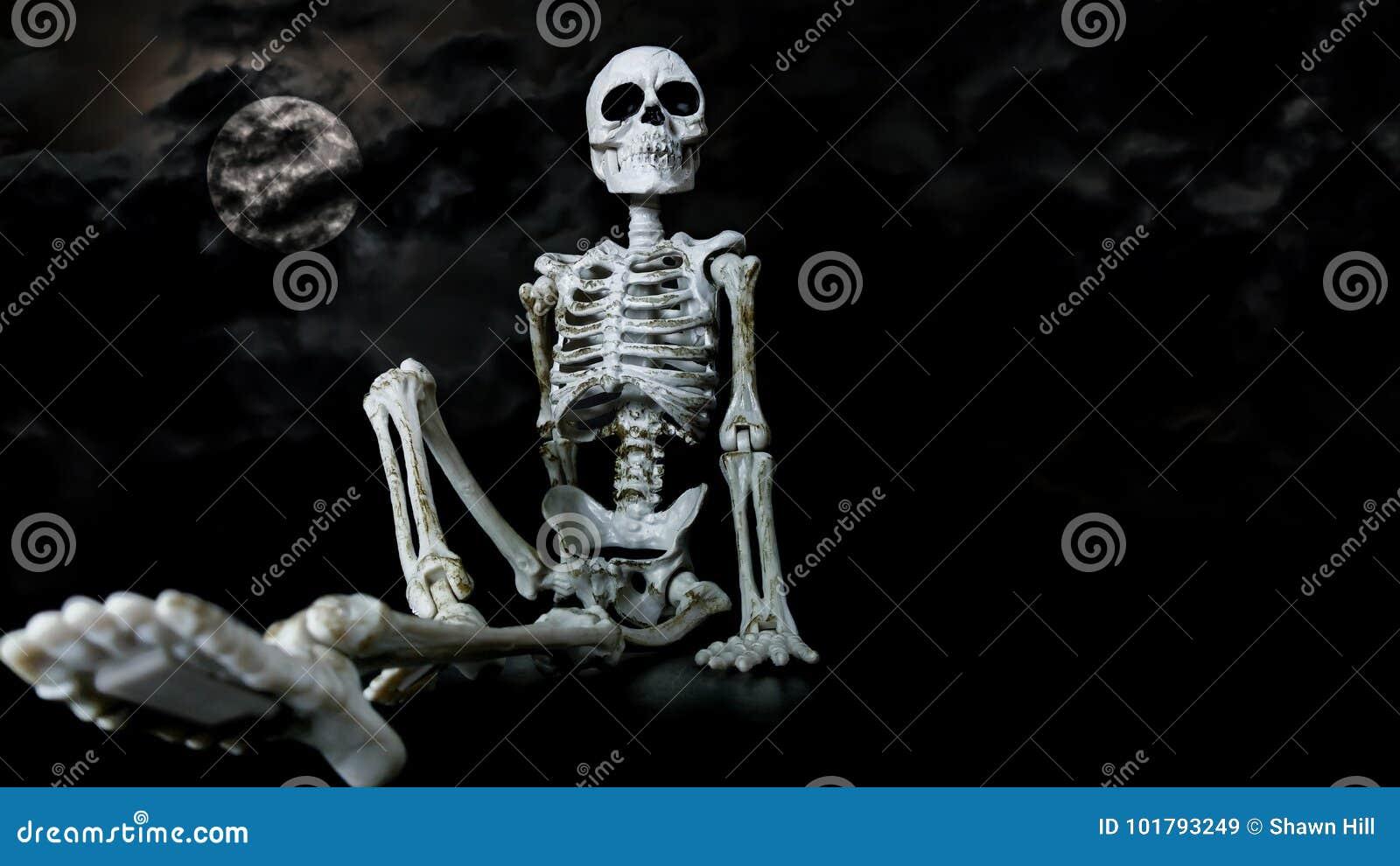 Halloween-Skelet het Koelen