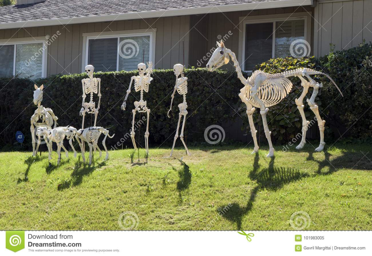 halloween skeleton group, horse, few people and dogs stock image