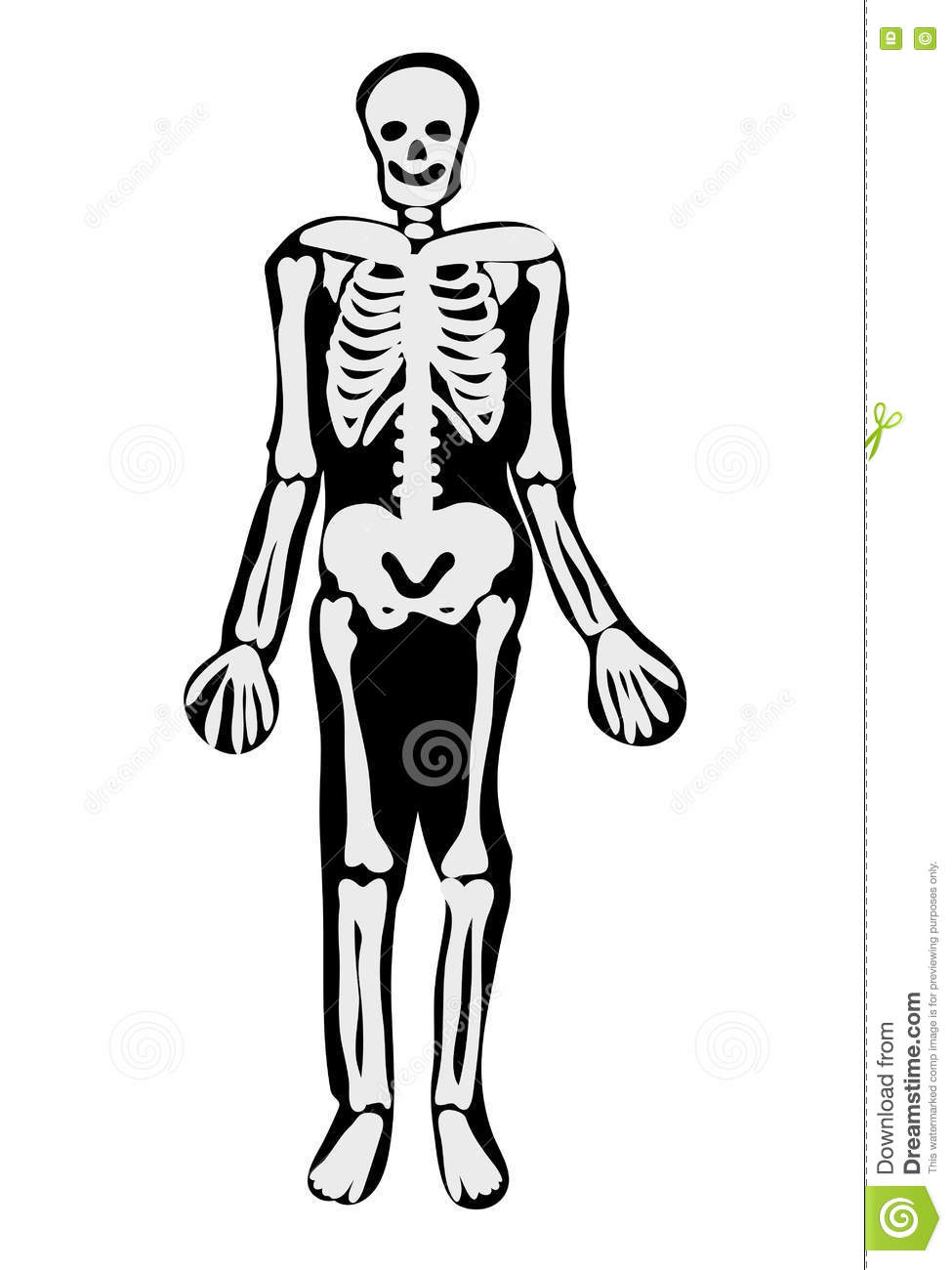 halloween skeleton coloring pages festival collections witch with