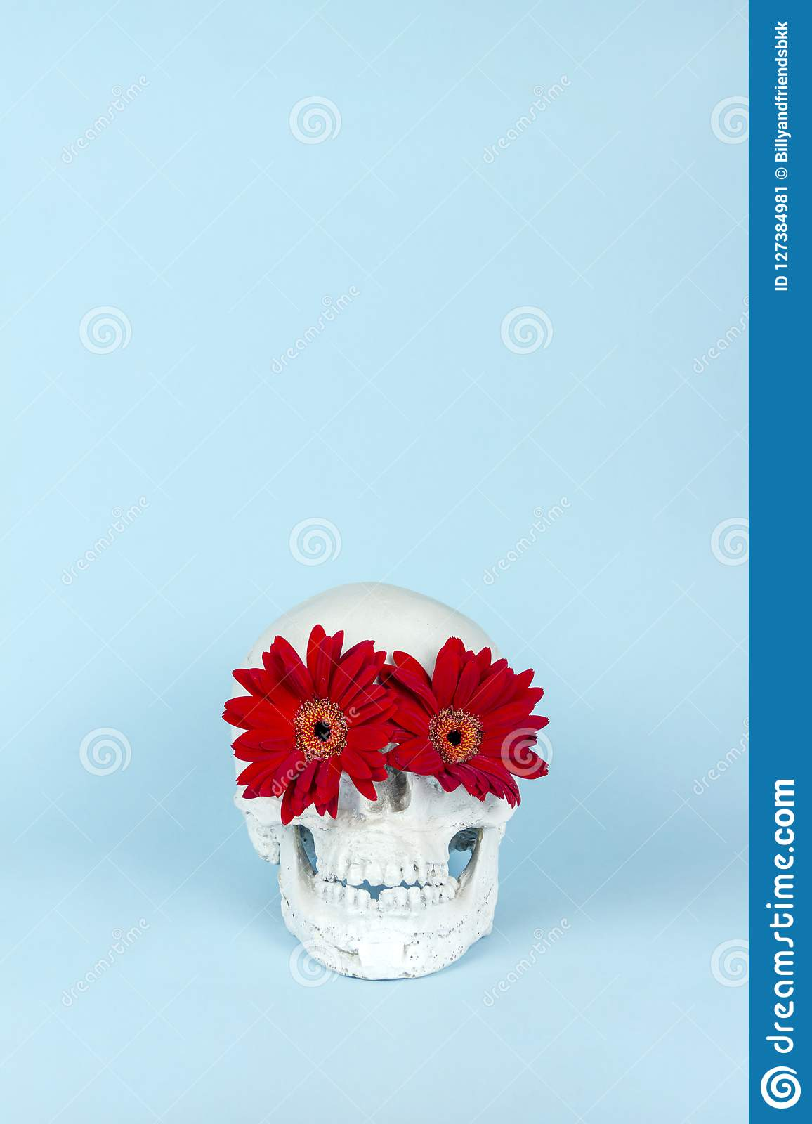 Halloween skull with red flower on pastel blue background