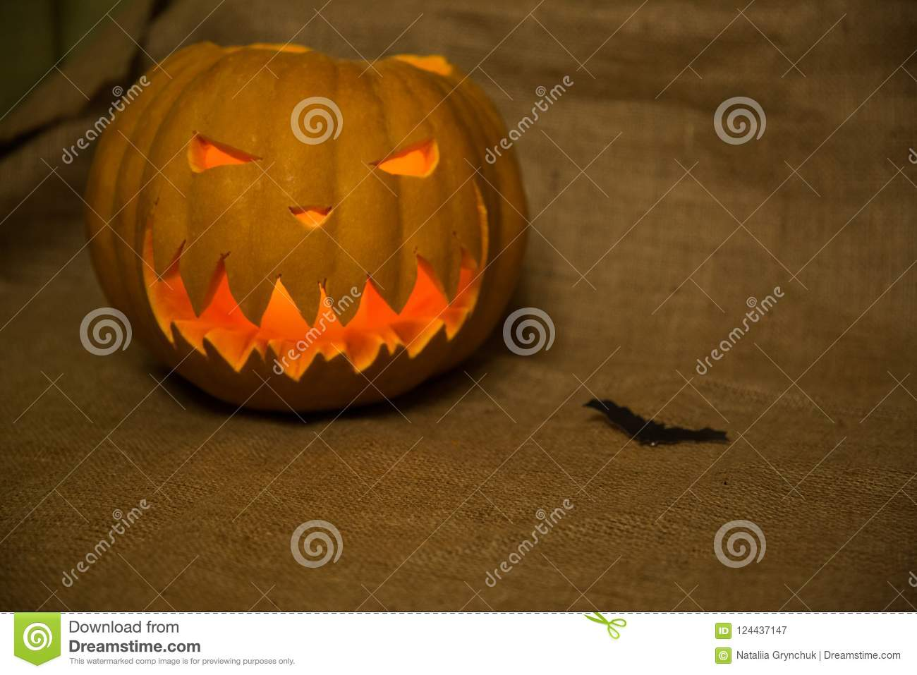Halloween Symbol Jack O Lantern And Bat Scary Carved Pumpkin Wi