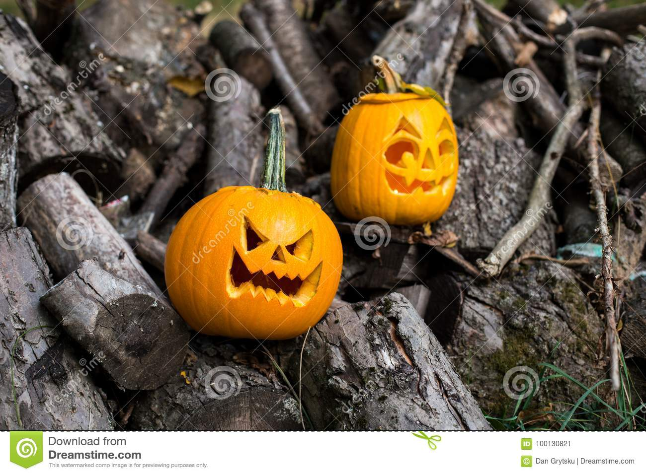 halloween themes composition of two carved halloween pumpkins on