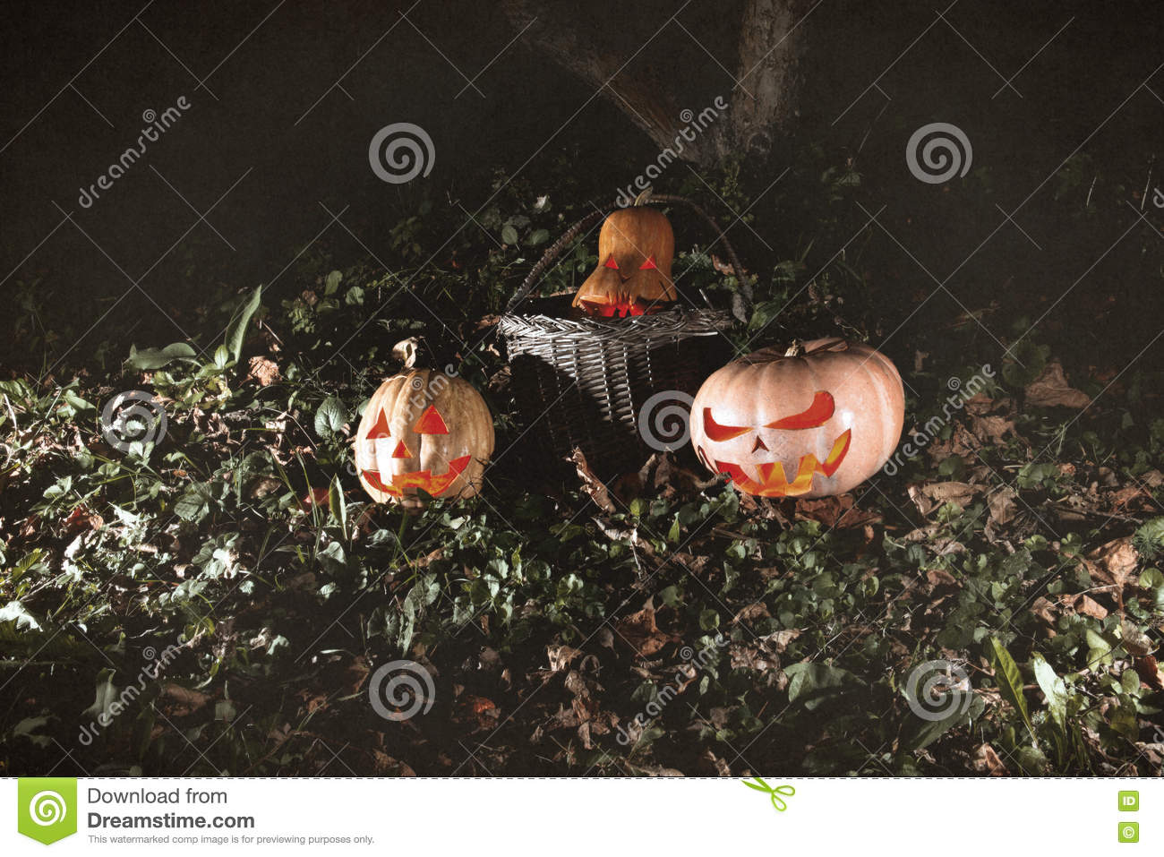 Halloween three pumpkins in leaves and grass in the dark, scary