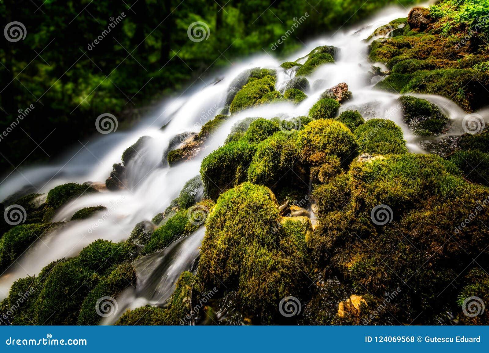 Halna siklawa z czystą wodą i zieleni roślinnością