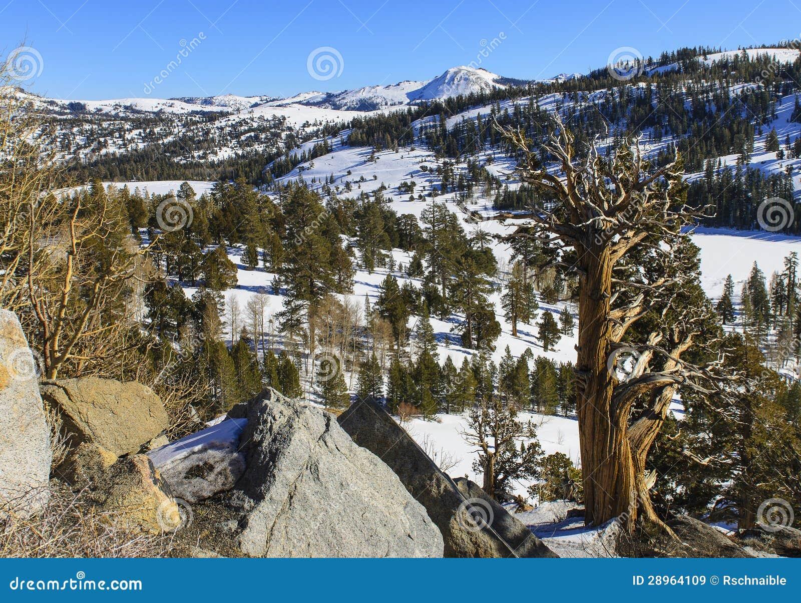 Halny zima krajobraz
