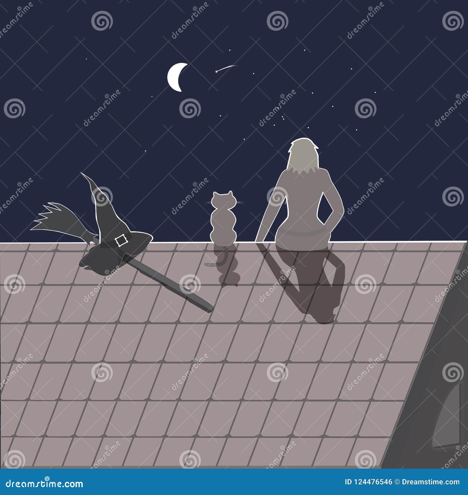 Haloweenscène Meisje met haar kat, bezem en heksenhoed op het dak