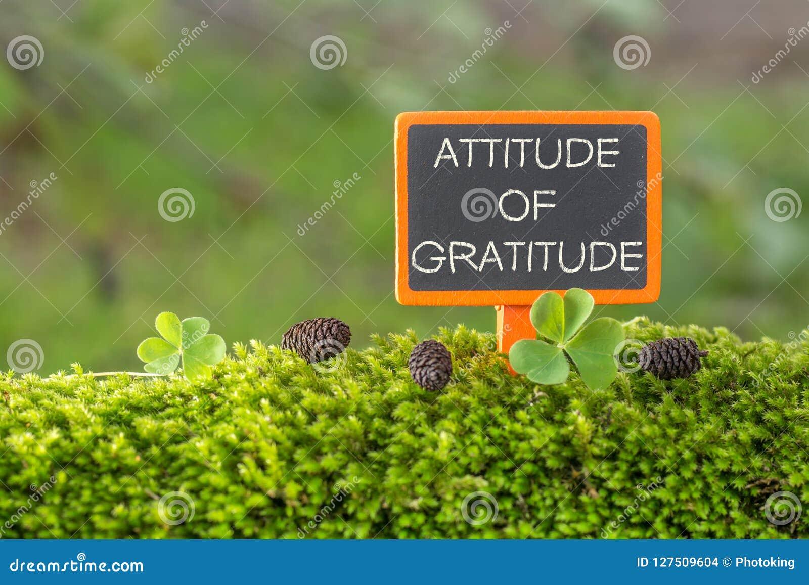 Haltung des Dankbarkeitstextes auf kleiner Tafel