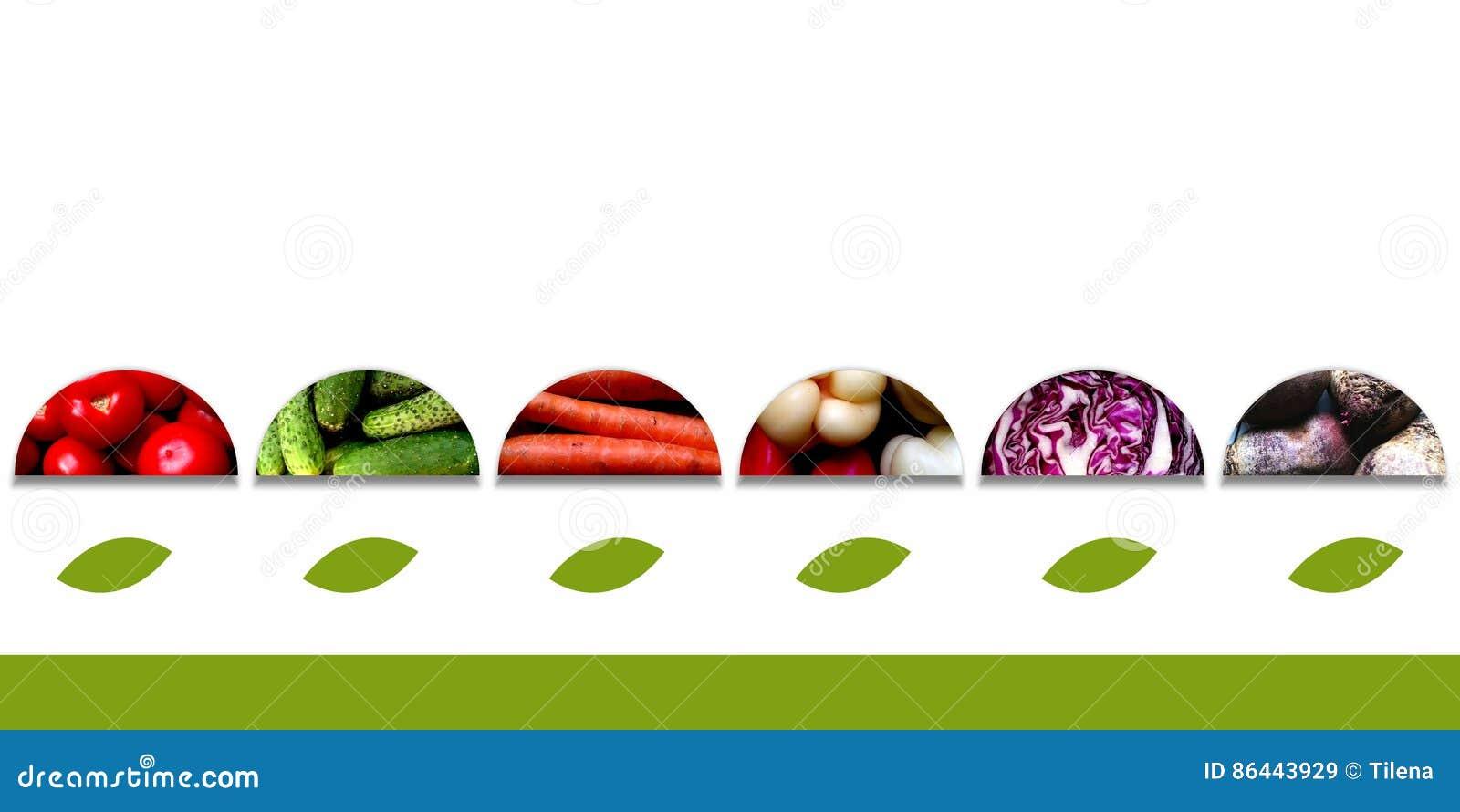 Halvcirklar med grönsaker och med stora blad under