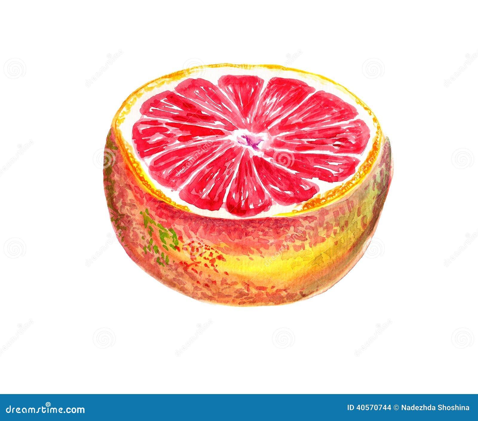 Halve og grapefruit