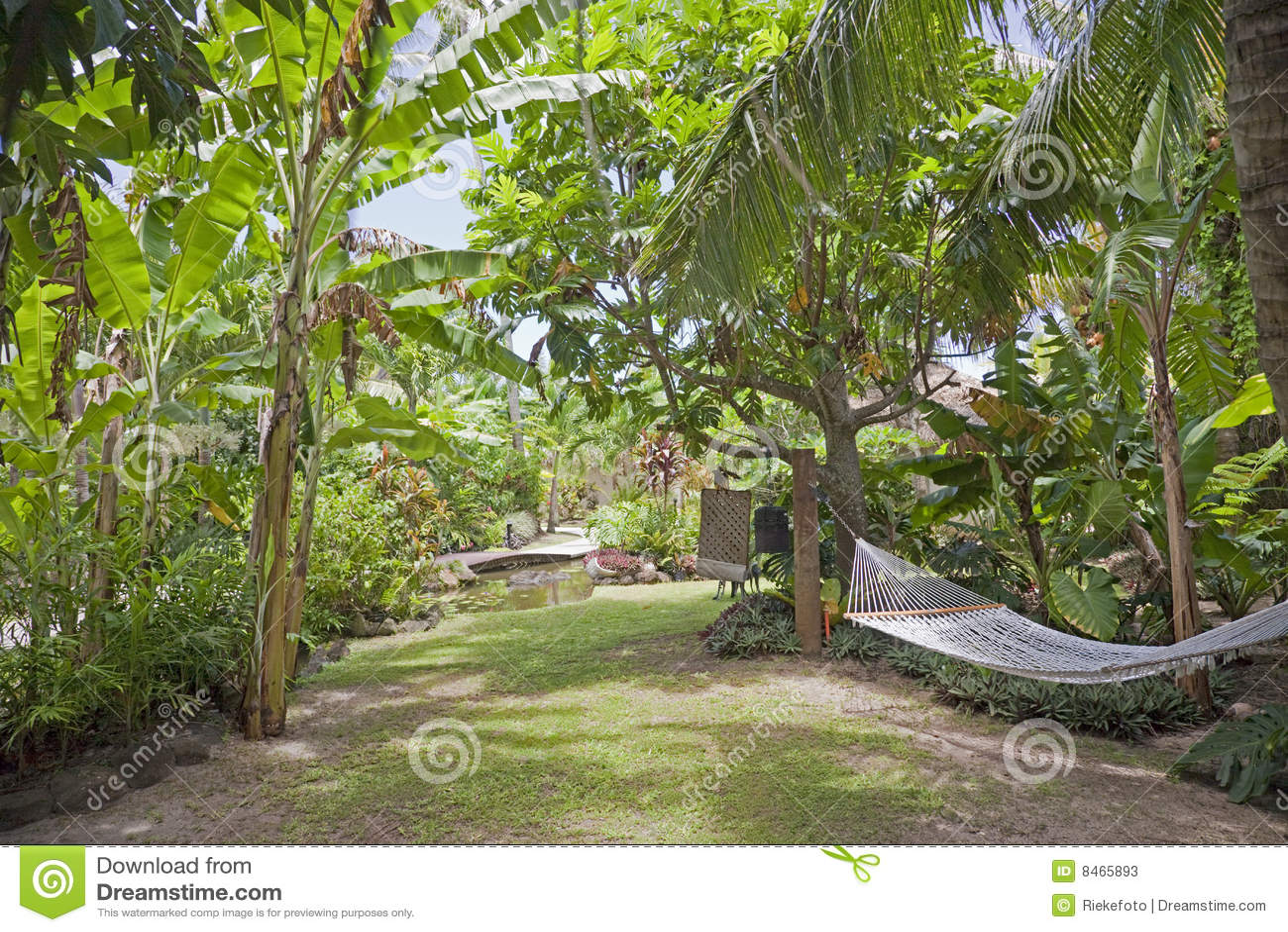 hamac de jardin tropical photos stock image 8465893. Black Bedroom Furniture Sets. Home Design Ideas
